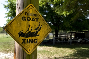 goats_graphic_revised